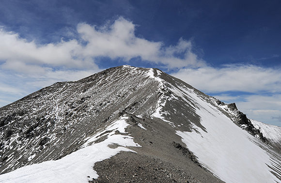 Southern Alps Taster